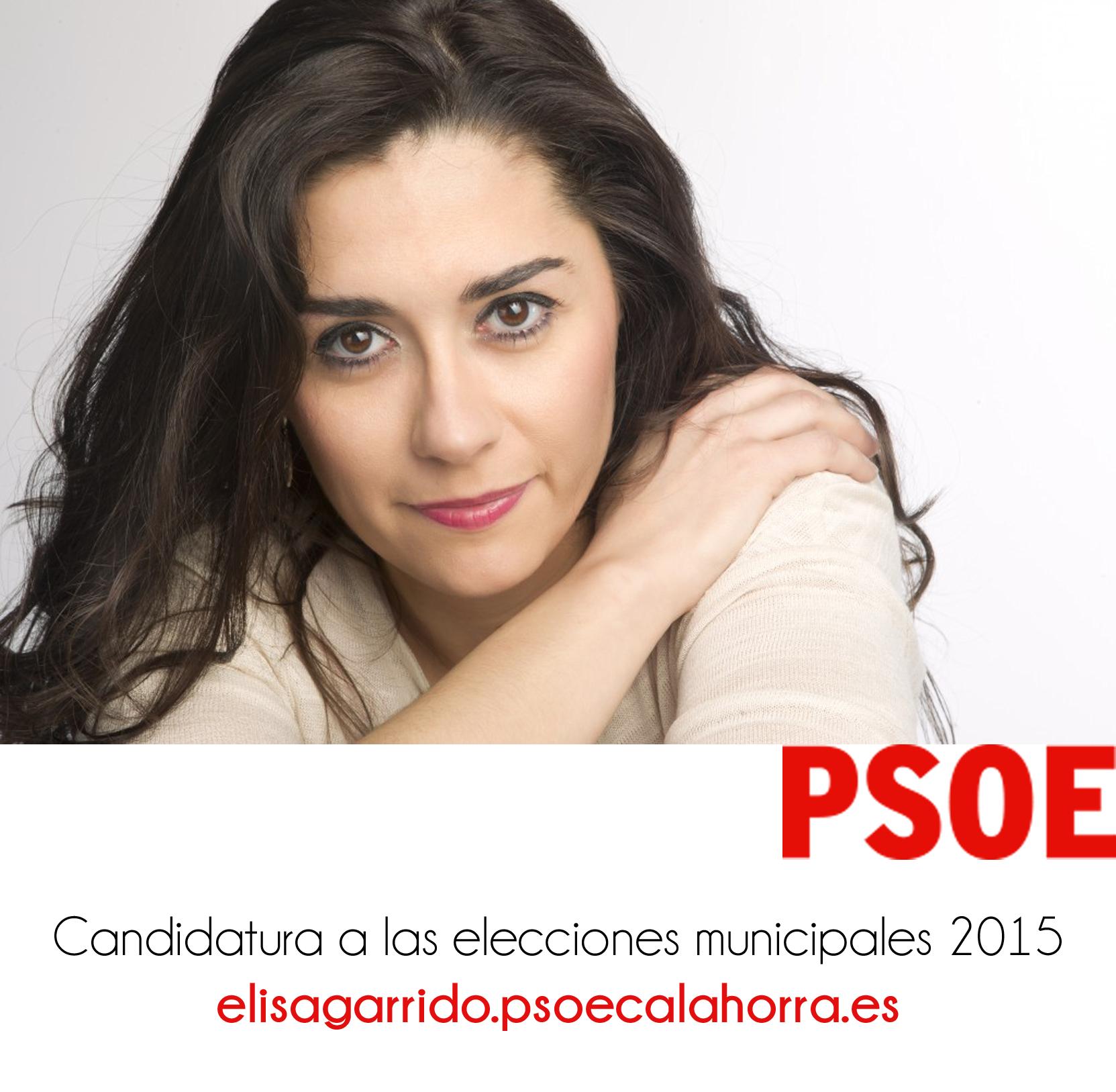 boton_candidatura2015